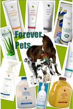 Products for the whole family Forever Living Products, Health And Wellbeing, Aloe Vera, Lotion, Skin Care, Animals, Wellness, Forever Products, Animales