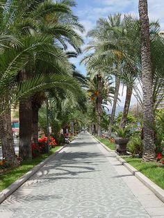 Avenida de Aguilar y Quesada, Puerto de la Cruz, Tenerife