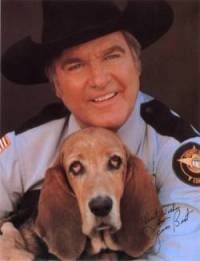 The Dukes of Hazzard! :D sheriff rosco p. coltrane & flash