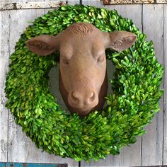 Our Cow Head Wall Mount is to die for!!! Show off your Farmhouse Style Mounted Cow Head to make a whole new decor statement! Get THE BEST deals on Cow Heads here at Decor Steals.