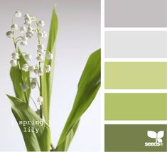 Love this color pallette.  Spring lily  If lily of the valley is not available, get this pallette using artemisia, lamb's ear, seeded euc, green lysianthus, and/or green roses.  Pale blue delphiniums would look great too.