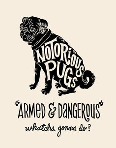 3/27: Notorious Pugs Jay Roeder Type Hand Illustrated