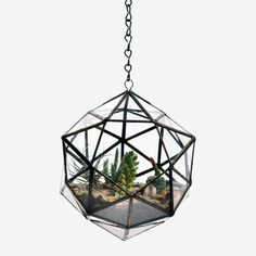 Matthew Cleland of Score+Solder makes these striking terrariums by hand in Pender Island, British Columbia, Canada.