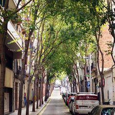 #urbanstreet #street #calle #carrer #carrermargarit #poblesec #barcelona #españa