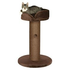 Pepino Scratching Post