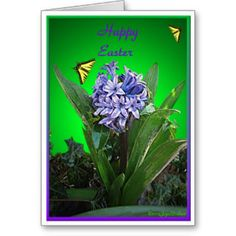 Happy Easter - Purple Hyacinth and Butterflys Cards