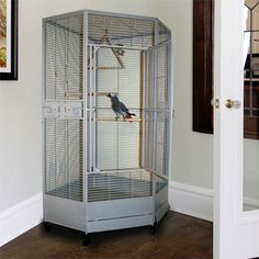 """Kapoho Kave II Corner Bird Cage  42"""" Size. African Grey and Parrot Cage!"""