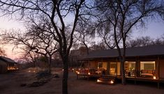 Abelana Safari Camp is a camp located on a 15 000 ha Big Five game reserve adjacent to the Greater Kruger National Park – the country's prime big game region. Rates displayed are on a tented camp basis, and includes tea and coffee, light snacks, risks, muffins before morning drive, brunch, high tea with savoury and sweet options and dinner. Also included is a morning walk and an afternoon/evening game drive with a qualified guide and tracker. Home Login, Light Snacks, Kruger National Park, Game Reserve, Future Travel, Ultimate Travel, Nature Reserve, Big Game, Business Travel