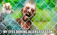 Allergies ever make you feel like you're dying? Bahahaha laughed out loud on this one!