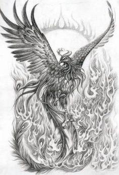 pheonix   Phoenix Tattoo Image Picture Graphic Amp Photo
