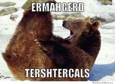 ermahgerd meme derp bear