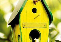 Znalezione obrazy dla zapytania karmniki dla ptaków budowa