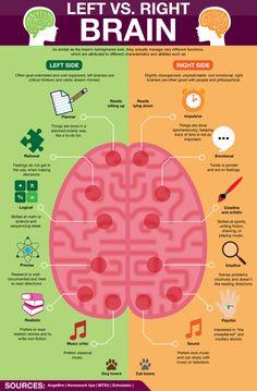 health education Left Brain vs Right Brain ~ Poster Brain Science, Brain Gym, The Brain, Brain Food, Brain Anatomy, Anatomy And Physiology, Left Vs Right Brain, Brain Poster, Poster Poster
