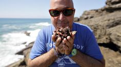 I get really excited harvesting percebes in São Lourenco - via Bizarre Foods: Lisbon, Portugal | Andrew Zimmern traveled to Lisbon, Portugal, to check out its impressive food scene. Go behind the scenes with Andrew to get his take on the food, people and amazing culture of Lisbon.
