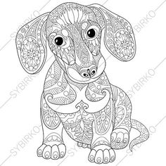 Adult Coloring Page. Dachshund Puppy. Zentangle Doodle