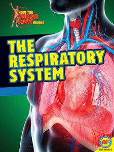 The Respiratory System is part of the How the Human Body Works series. Published by Weigl Publishers, August 2014.