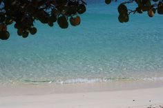 Honeymoon Beach, St. John, USVI only one of the beautiful beaches on our island. Spend your  honeymoon at romantic private Perelandra VRBO #18786