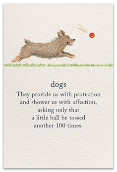 A very fresh approach to cards, these 100 illustrated designs feature popular symbols and their significance. Dog Quotes, Life Quotes, Animal Symbolism, Spiritual Symbols, Flower Meanings, Symbols And Meanings, Meaning Of Life, Dog Mom, Puppy Love