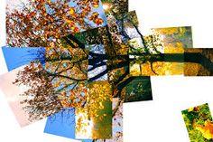 Image result for david hockney photomontage