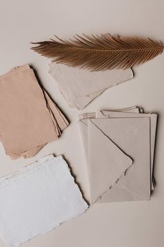 Cream Aesthetic, Brown Aesthetic, Aesthetic Collage, Aesthetic Vintage, Aesthetic Photo, Aesthetic Pictures, Beige Wallpaper, Aesthetic Pastel Wallpaper, Aesthetic Backgrounds