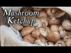 Making Mushroom Ketchup, 18th Century Cooking Series at Jas Townsend and Son - YouTube