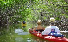 Lazy Dog : Key West Kayak and Paddleboard Tours, Rentals and More… » Kayaking.  2 hour guided kayak tour for $40.
