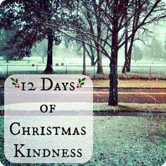 The Iowa Farmer's Wife: 12 Days of Christmas Kindness