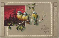 Tammy Tutterow Vintage Image   A Happy New Year Bluebird Trio