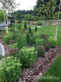 Home Vegetable Garden, Sun Garden, Shade Garden, Driveway Entrance Landscaping, Backyard Landscaping, Rustic Gardens, Outdoor Gardens, Landscape Design, Garden Design