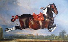 Magnolia Box Poster The Piebald Horse 'Cehero' Rearing, Kunstdruck von Johann Georg Hamilton Painted Horses, Fine Art Amerika, Hamilton Painting, Framed Art Prints, Painting Prints, Horse Wall Art, Canvas Art, Canvas Prints, Big Canvas