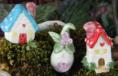 Terrarium Mushroom House Miniature .. Fairy or Gnomes can live here.