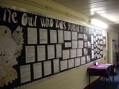 Corridor wall displays - 'The Owl who was Afraid of the Dark' | Classroom Displays