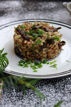 Staročeský kuba z hub patří k Vánocům stejně jako ryba nebo čočka. Na rozdíl od jiných tradičních jídel vám dietní režim rozhodně nenabourá. Naopak. Zkuste jej a příští Vánoce už si bez něj nedokážete představit! Staročeský houbový kuba Ingredience: (cca 4 porce) 1 …