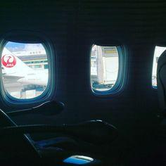 JL914(JAL914) F-class OKA -> HND in 201610 #travel #flight #jal #okinawa #japan #boeing777