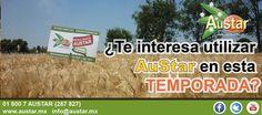 Para mayor información visita nuestra página web: www.austar.mx