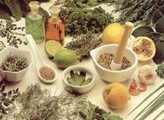"""sapientiapotestasest: """" Preparação e Manipulação das Ervas Medicinais As ervas após secas devem ser guardadas em recepientes de vidro ou de porcelana, separando-se as raízes, cascas e sementes das flores e folhas. As quantidades de ervas devem ser..."""