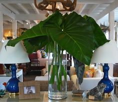 Giant greens at #Mecox #Southampton! #mecoxgardens #interiordesign #design #foral #decor #home #green