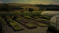 Chef Simon Rogan's farm in Cumbria, UK
