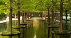 Dan Kiley / Fountain Place