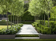 Beautiful avenue and stair hedges and layering. Peter Fudge garden design