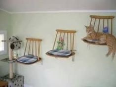Cat shelves from upcycled kitchen chairs. - DIY Cat Stuff… Cat shelves from upcycled kitchen chairs. DIY Cat Stuff… Cat shelves from upcycled kitchen chairs. Diy Cat Shelves, Diy Cat Tree, Cat Hammock, Cat Towers, Cat Playground, Playground Ideas, Cat Room, Cat Condo, Pet Furniture