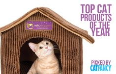 Cat Fancy and its product-testing kitten models tried the latest toys, trees, carriers and bowls and selected the best.