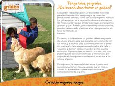 Los niños y los Golden Retriever son enteramente compatibles!!