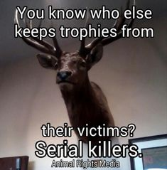 Hunters ARE serial killers. The lives of their targets are just less valued in this society. Same for the meat industry.
