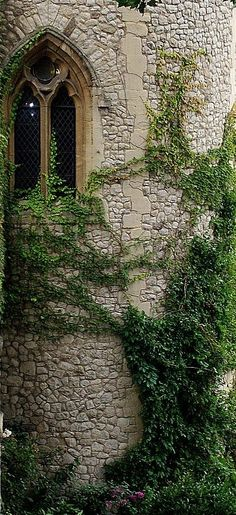 Ivy covered...love the window