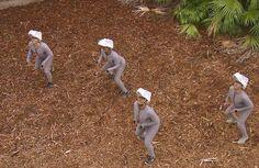Así lucen los velociraptors de Jurassic World sin efectos especiales.