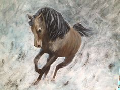 Horse at grey background