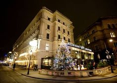 Experience the inimitable style of a true Grand Café. Coffee Specialities, Warm Viennese Desserts, Cakes and Pastries, Opening hours, Vouchers. Coffee Shops, Heart Of Europe, Salzburg, Vienna, Austria, Street View, Traditional, Mansions, House Styles