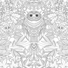 ➳➳➳☮ American Hippie Art - Coloring Page .. Owl