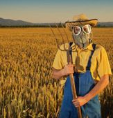 """10 Crazy Things Pesticides Are Doing to Your Body"" Rodale."